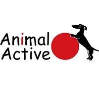 Animal Active Wrocław