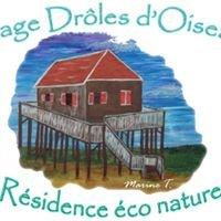 Village Drôles d'Oiseaux Le Teich
