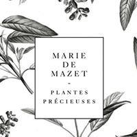 Marie de Mazet