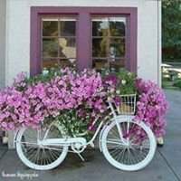 Kwiaciarnia Krystynka