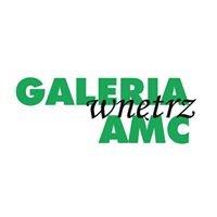 Galeria Wnętrz AMC