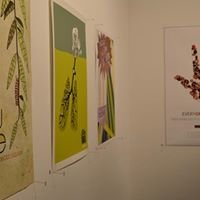 UNF Graphic Design + Digital Media Program