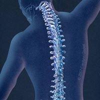 Kotila Chiropractic Inc
