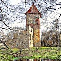 Zamek Chudów / Chudow Castle