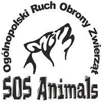 """Fundacja """"SOS Animals"""" Ogólnopolski Ruch Obrony Zwierząt"""