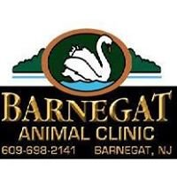 Barnegat Animal Clinic