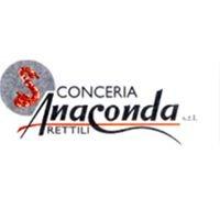 Conceria Anaconda