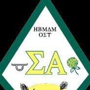 LSU Sigma Alpha