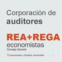 REA Auditores CGE