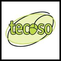 Tecoso - technology services for the modern era