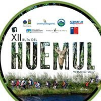 Ruta del huemul