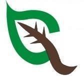 Green Cleen, A Detail Company, LLC