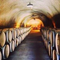 Sonoma/Napa Wine Valley