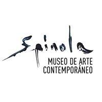 Museo de Arte Contemporáneo Mayte Spinola