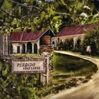 Perdido Vineyards
