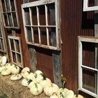 Chandler Mountain Pumpkin Market