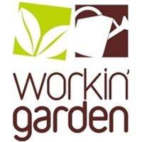 WorkinGarden