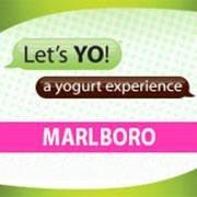 Lets Yo! Marlboro, NJ