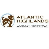 Atlantic Highlands Animal Hospital