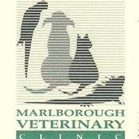 Marlborough Veterinary Clinic