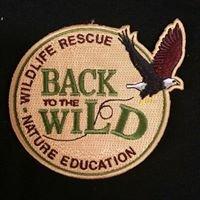 Back To The Wild, Castalia, Ohio