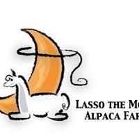 Lasso the Moon Alpaca Farm