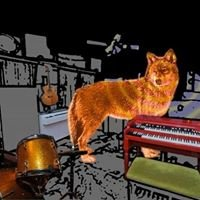 Coyote Hearing Studio