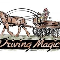 Driving Magic, Inc.