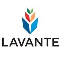 Lavante, Inc