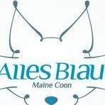 BR Alles Blau MC