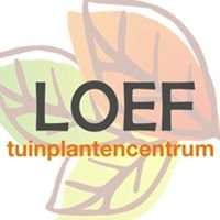 Loef, Tuinplantencentrum