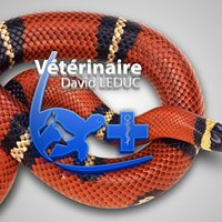 Cabinet Vétérinaire David Leduc