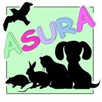 Association ASURA