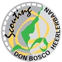 Scouting Don Bosco Heerlerbaan