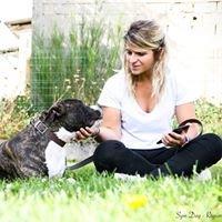 SYM DOG Région Centre - Éducateur Canin