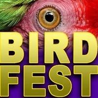Queensland Bird Breeders Club