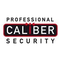 Professional Caliber Security