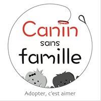 Canin Sans Famille