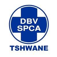 Adoptions: Tshwane SPCA