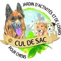 Jardin d'Activités et de Loisirs pour Chiens - Cul de Sac