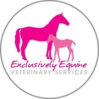Exclusively Equine Veterinary Service