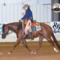 Jacque Kennon Show Horses