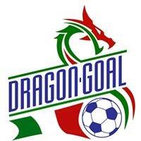 DragonGoal