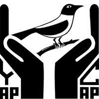 Yap Community Action Program