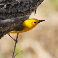 Peoria Audubon Society