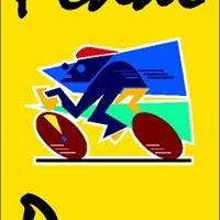 Pedal Power Malta