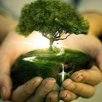 PLANT TREES, Save a Planet