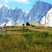 Erickson Cycle Tours, Inc.