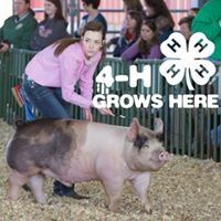Edgecombe County 4-H & Livestock