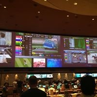 The Mirage - Sports Book